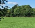 Land in Sallins, Kildare for sale