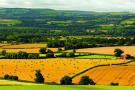 Lyth Hill view