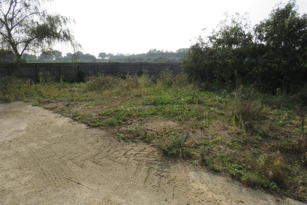 Further Rear Garden.