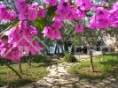10 bed Detached house for sale in Ciovo Island...