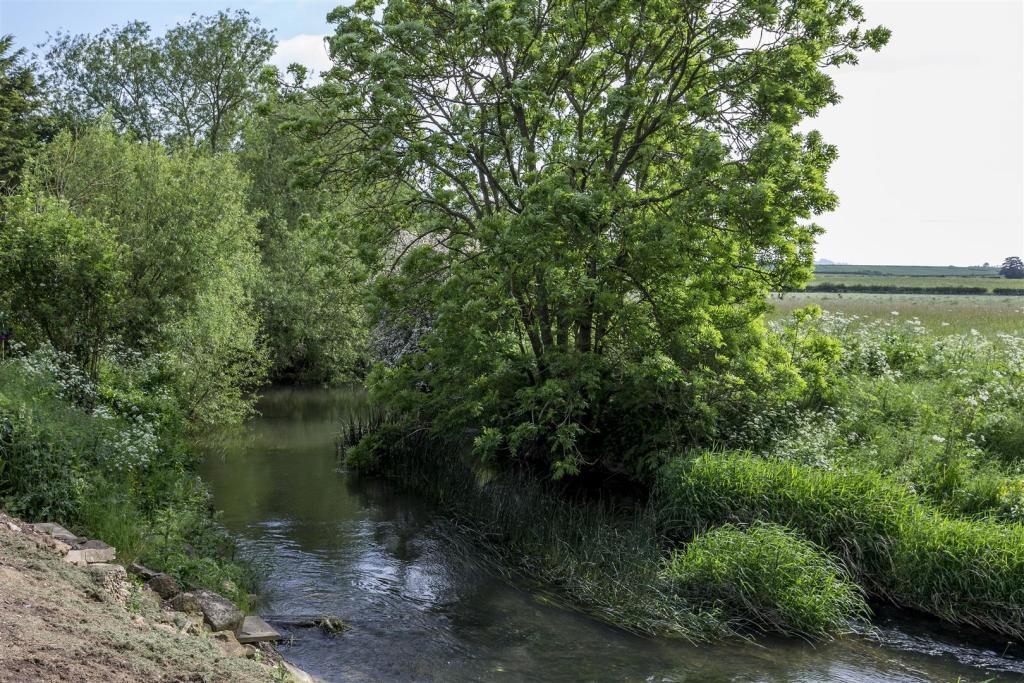 Ald-River-03A.jpg