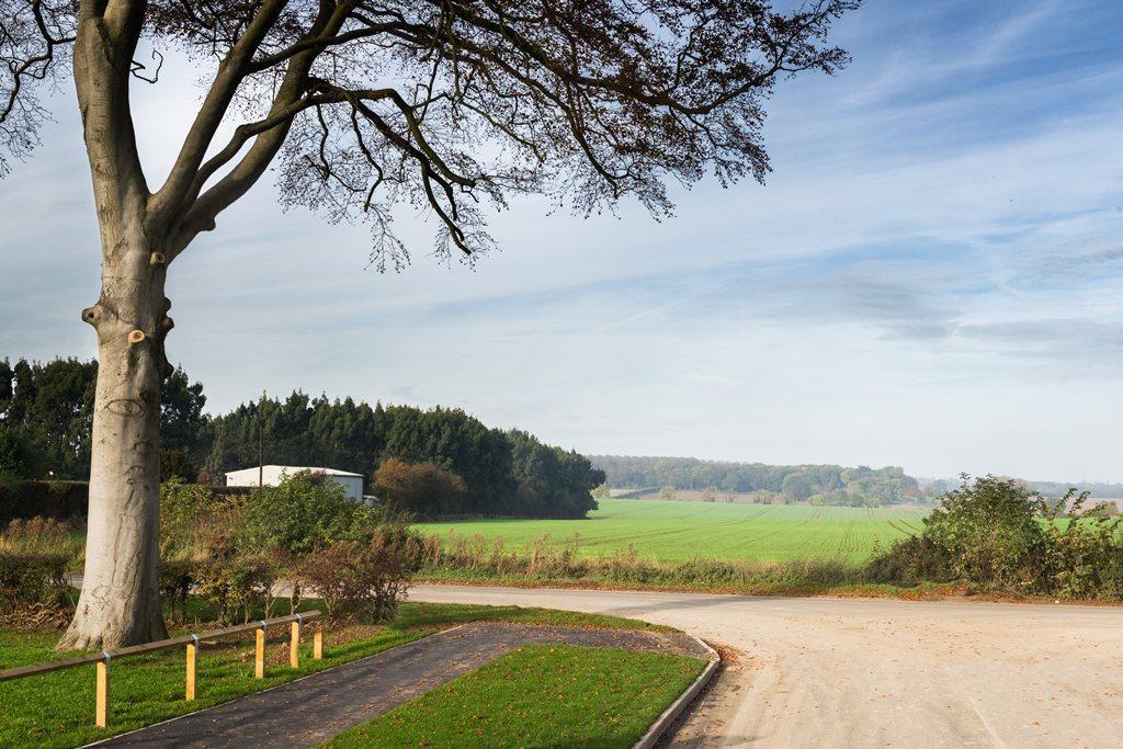 Tranby Fields views