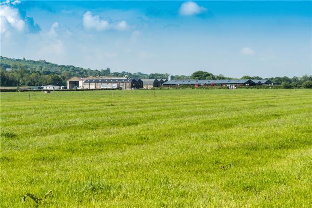 Pasture and Yards