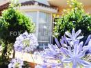 3 bedroom Detached house in Paphos, Anavargos