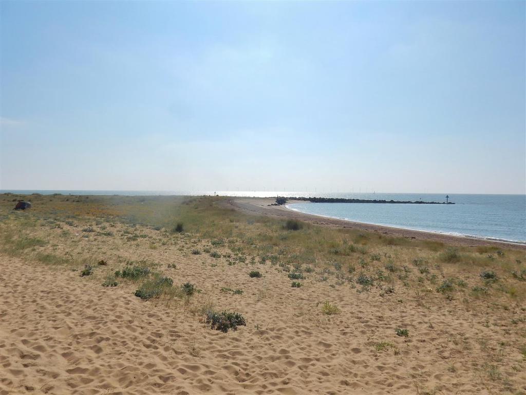 ALTERNATE SEA FRONT