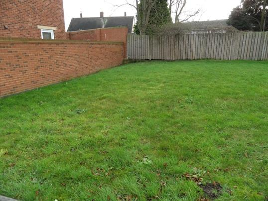 Site of plot 3