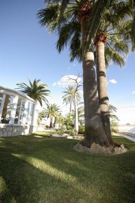 Luxury Property in Benissa, garden
