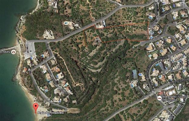 Pintadinho Algarve P