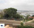 Arade riverview