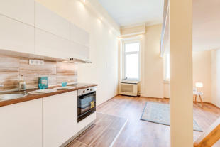 Flat in District Vii, Budapest