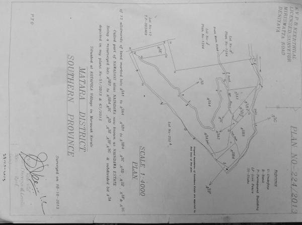 Surveyor plan front