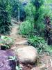 Path to top bungalow