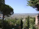 View bottom terrace
