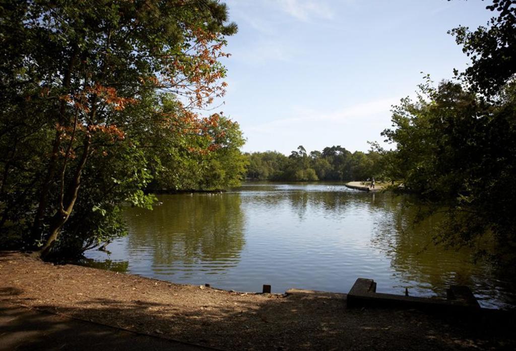 Wokingham location photography