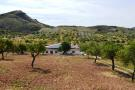 Spain - Andalucia Cortijo for sale