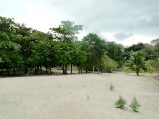Land in Islas de la Bahía, Roatán