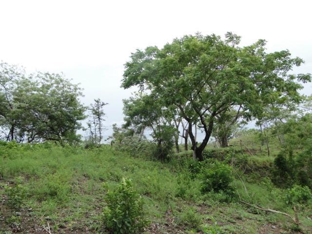 Land for sale in Roatán, Islas de la Bahía