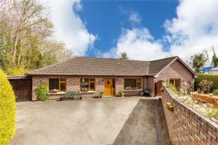 Detached Bungalow in Agapanthus, Newtown Lane...