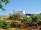 Finca in Zagra, Granada, Andalusia for sale