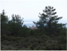 Land in Souni, Limassol for sale