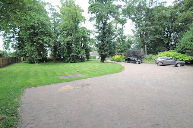 Driveway/Front Gardens