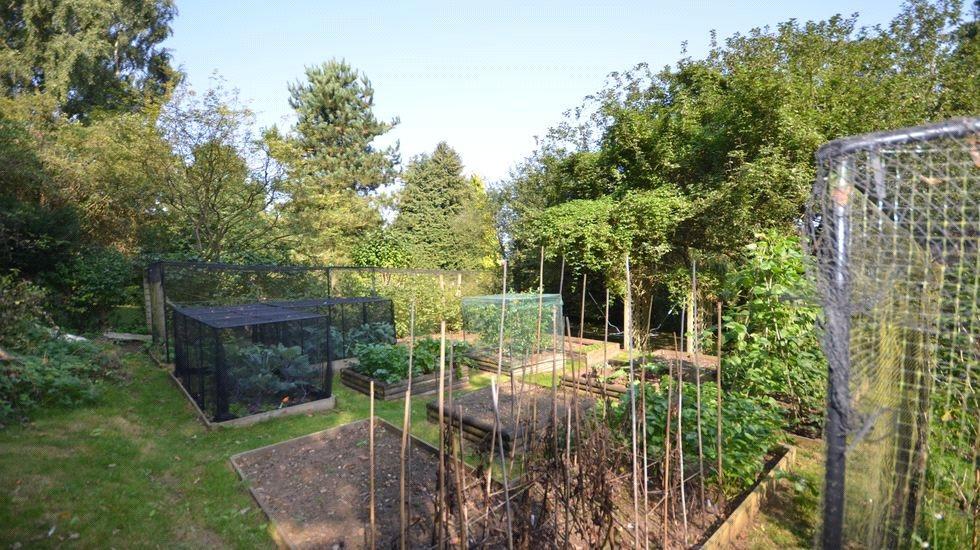 Garden 1H