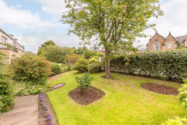 front garden alt