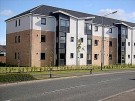 Ground Flat to rent in Shawfarm Gardens...