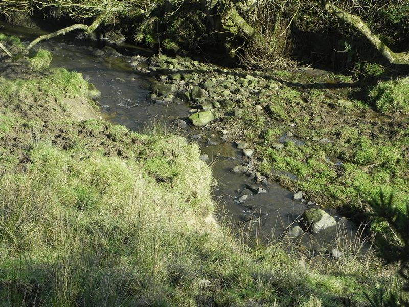 Stream at Brow...