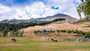 Glenorchy Equestrian Facility property for sale