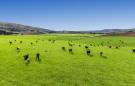 property for sale in Hyde, Otago