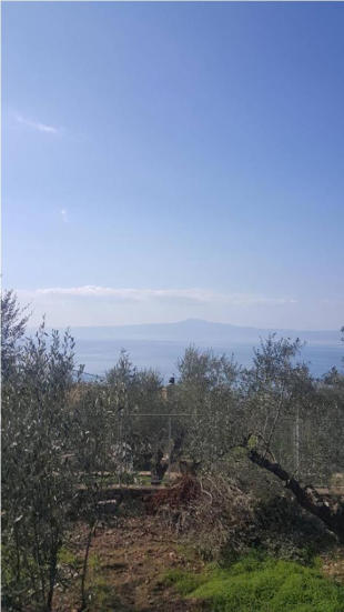 property for sale in Kalamata, Messinia, Peloponnese