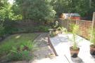 new garden one