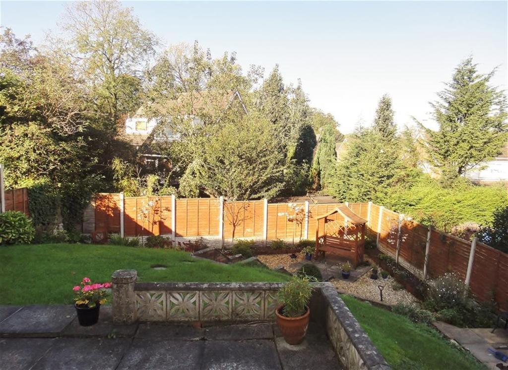 Garden Views 7