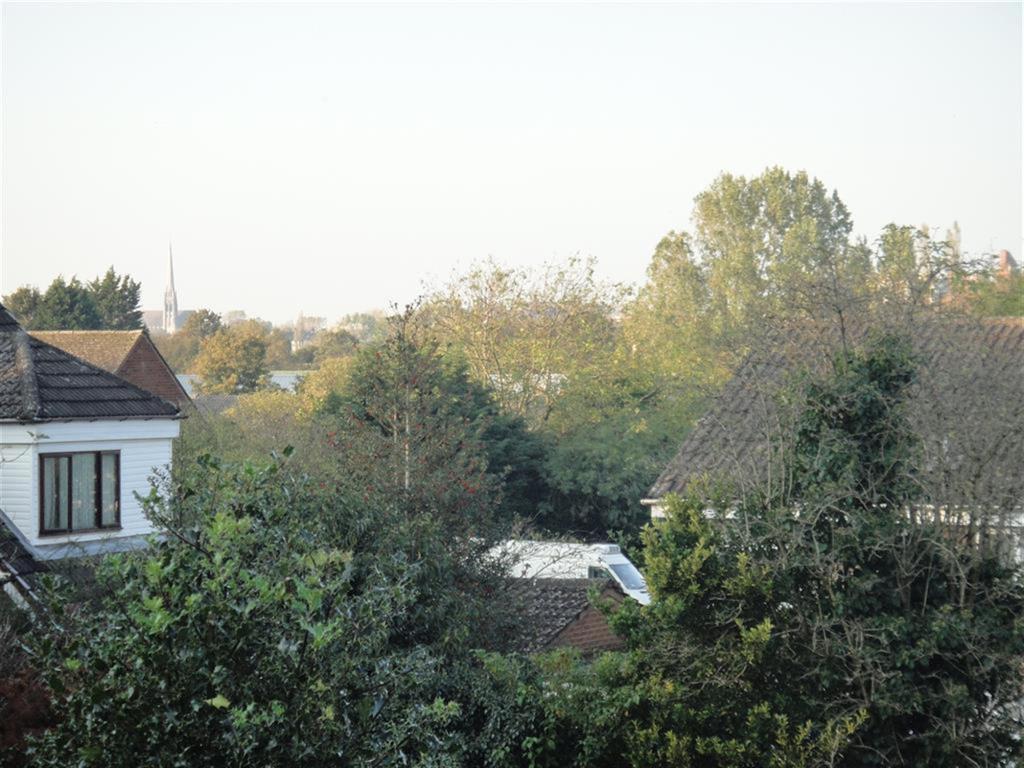 Garden Views 5
