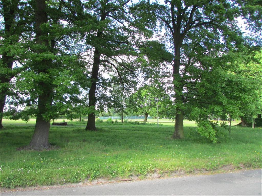 adjacent parkland