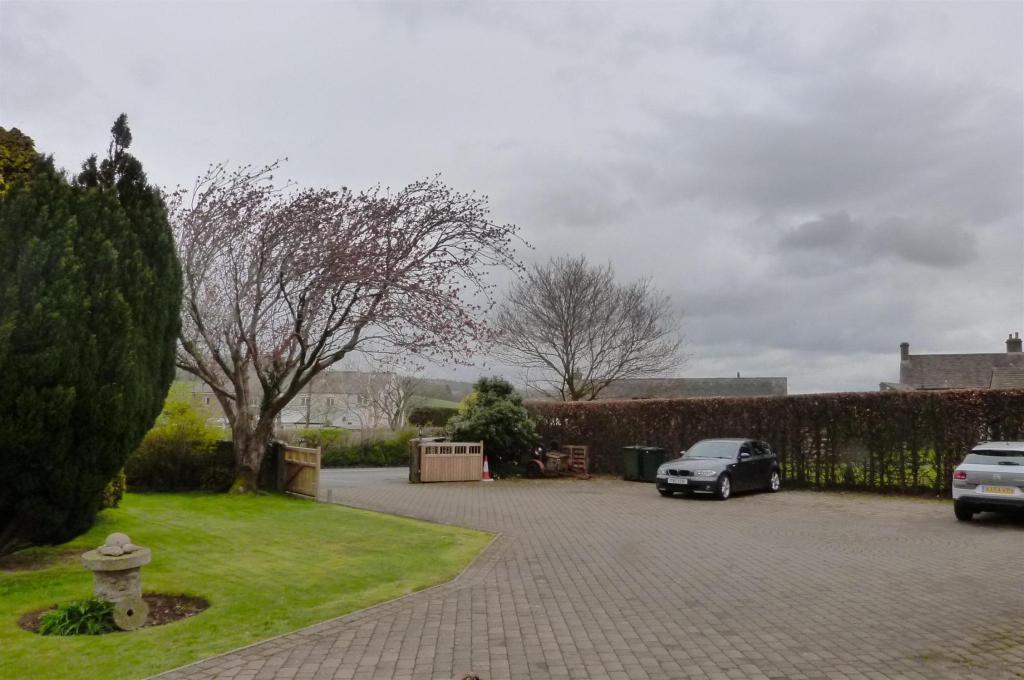 Driveway Area