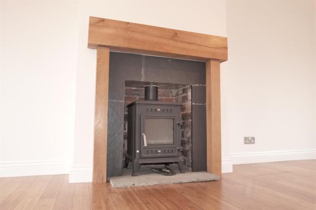 Lounge Wood Burner