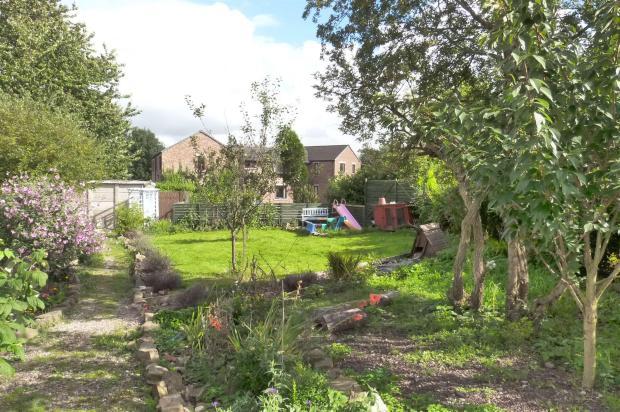 Side Garden (