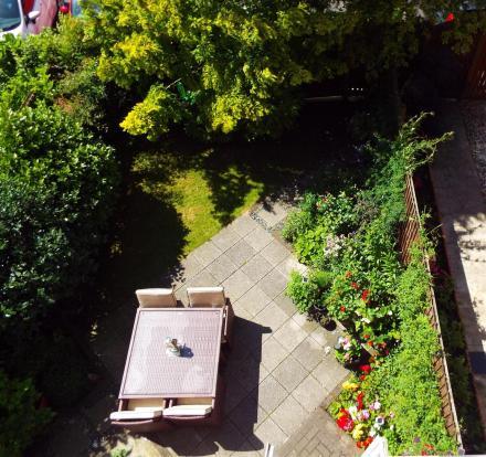 ariel garden view