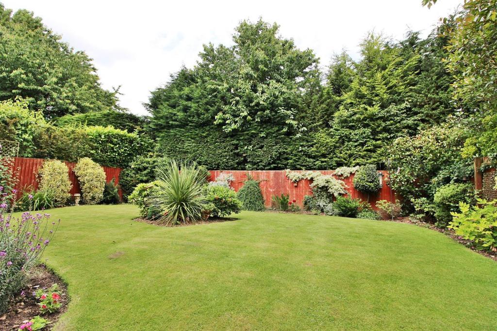 Garden n.JPG