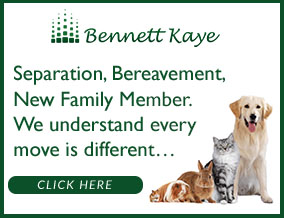 Get brand editions for Bennett Kaye, Halifax