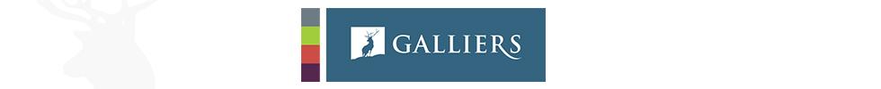 Galliers Homes, Kings Vale