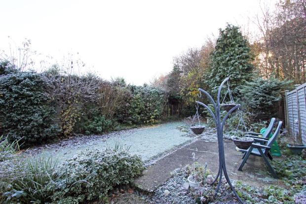 Garden and Patio 2