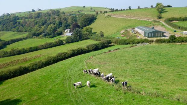 Troedyrhiw Farm