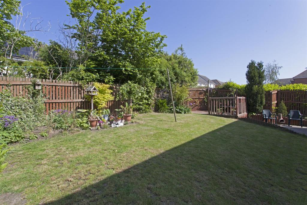 Garden 5 .jpg