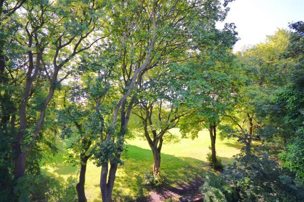 11.Brookfield Garden
