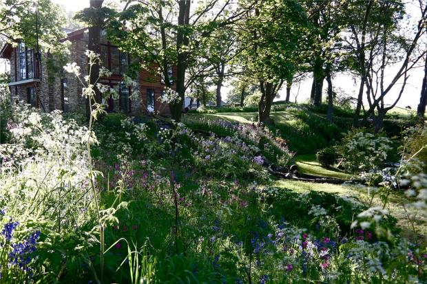 Garden (B)
