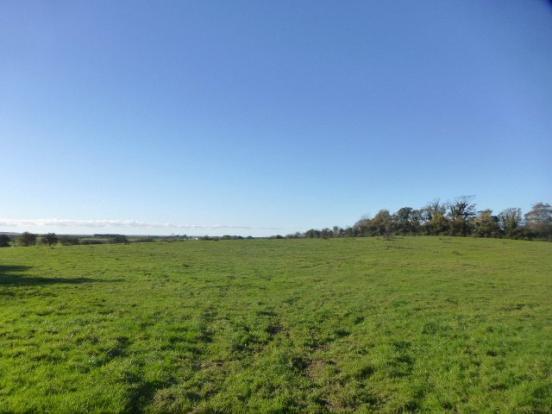 Land Off Marsh Lane