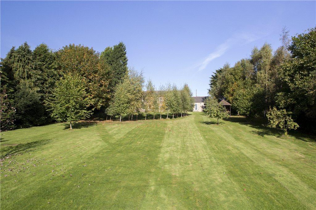 Extensive Lawns